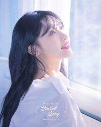 Moon Hyuna Teaser Cricket Song 5